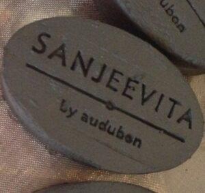 Sanjeevita